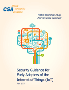New Security Guidance for Early Adopters of the IoT